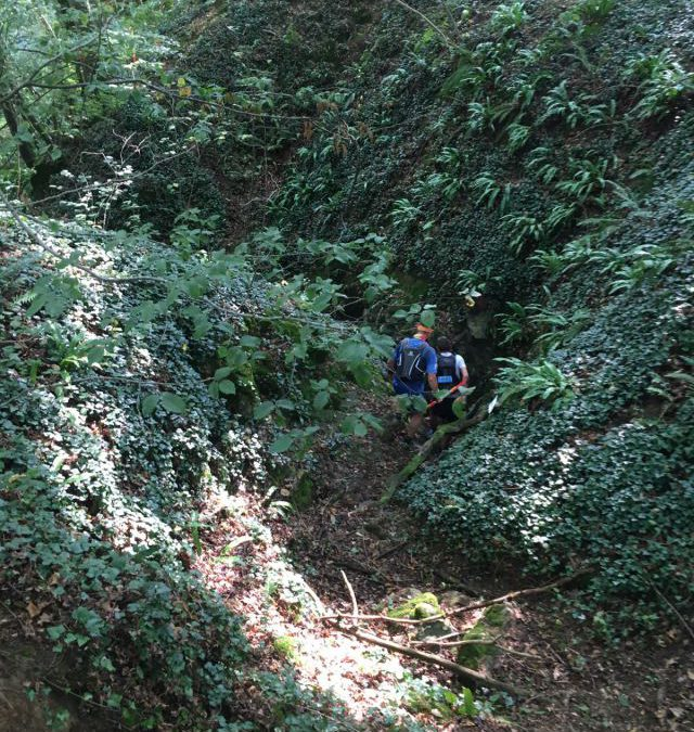 Zwijnen in de Ardennen – Hastrail 33km