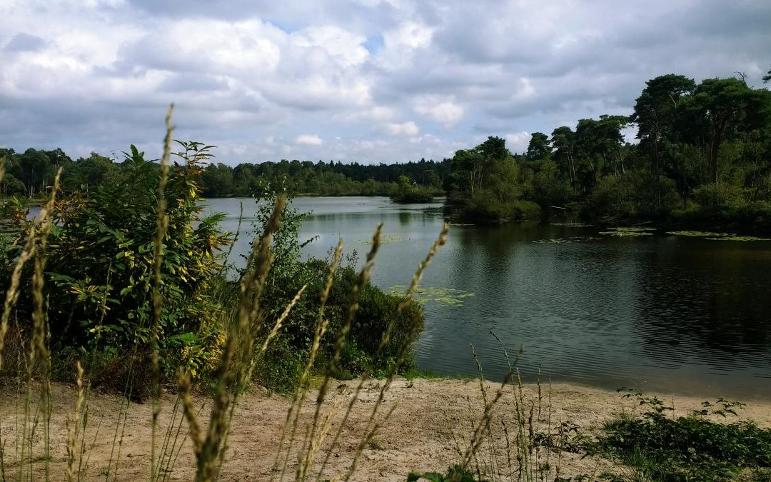 NS Brabantse Vennen Trail