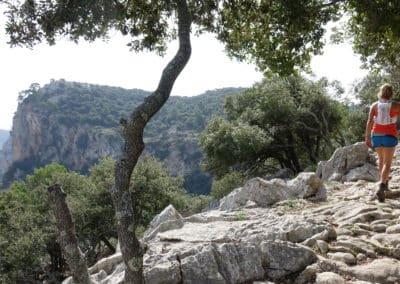 Mallorca 4 (4)
