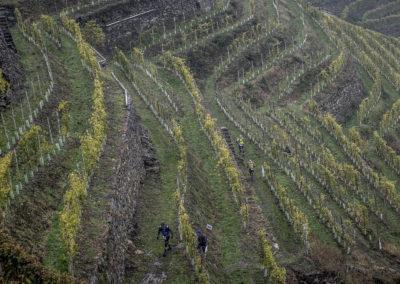 valtellina winetrail actiefoto6
