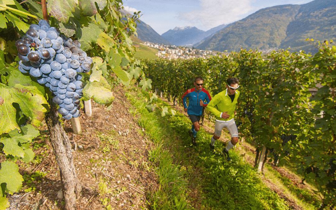 Valtellina WineTrail reisverslag 2018